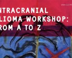 INTRACRANIAL GLIOMA WORKSHOP: From A to Ζ.
